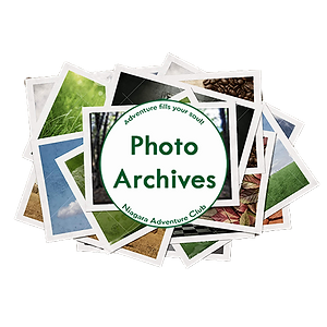 Photo Archive Button.png