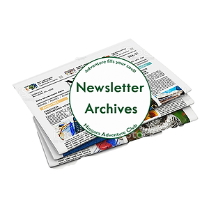 Newsletter Archive Button.png
