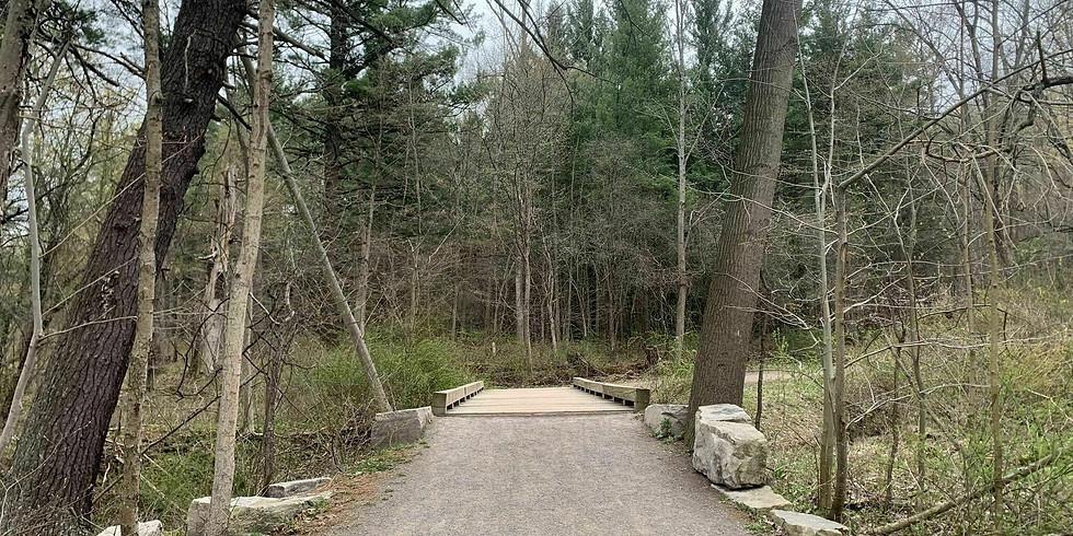 Monarch Sulfer Loop Hike