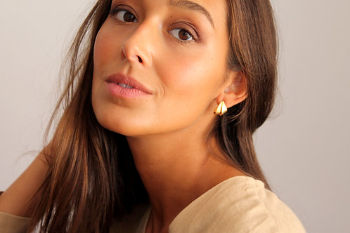 PENA brincos   earrings