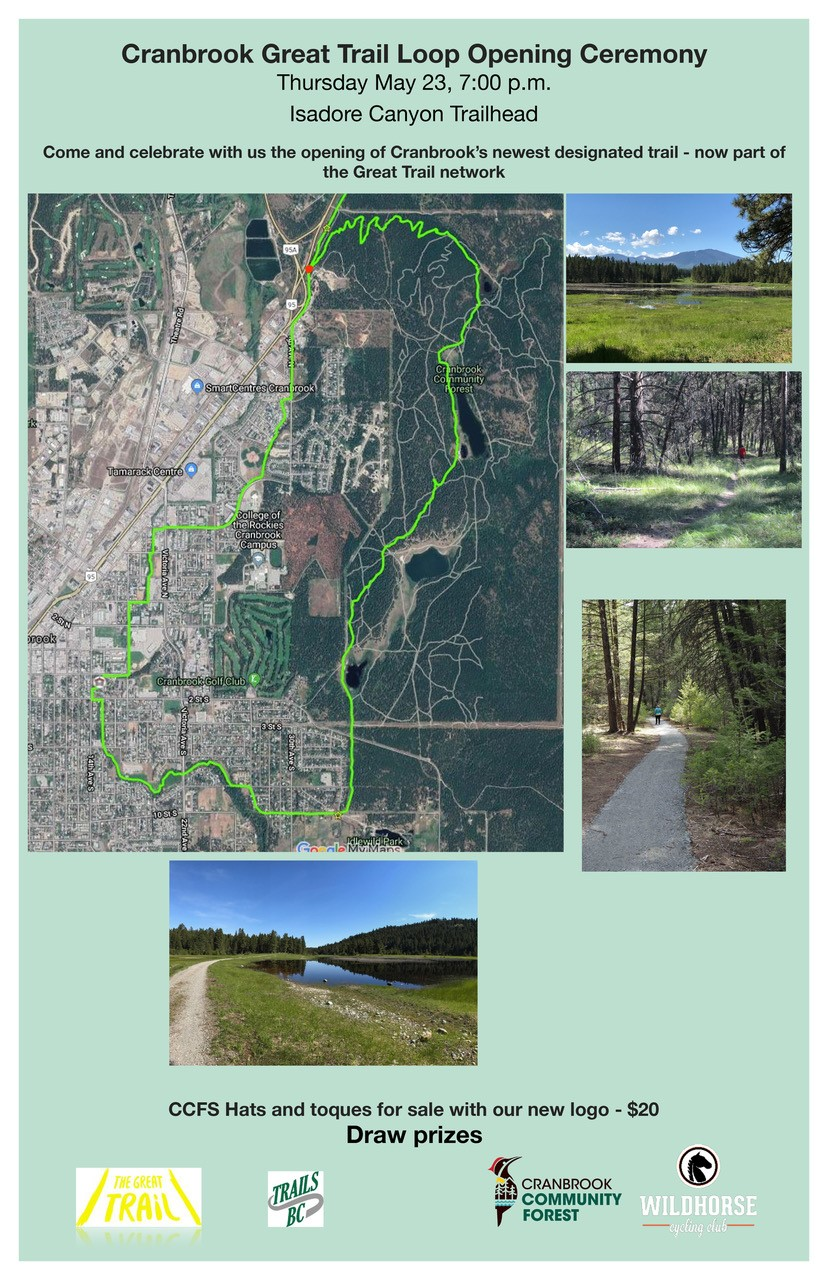 Cranbrook Community Forest - Over 100KM of Trails to Explore
