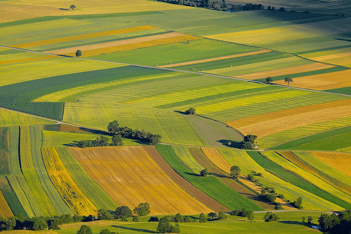 lombardy-agriculture-graphic-design.png