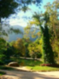 Botanical Garden at Jardim Botânico in the city of Rio de Janeiro.