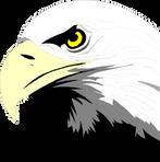 RCA LOGO Bald Eagle Head_.png
