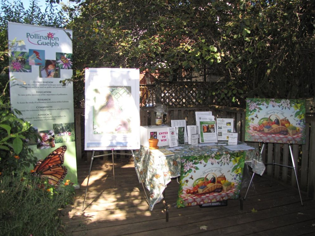 Pollination Guelph Display