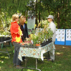 Pollination Guelph Event_edited