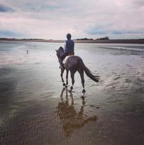 Beach riding with Vinny