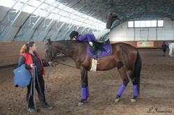 Катание на лошадях в Москве