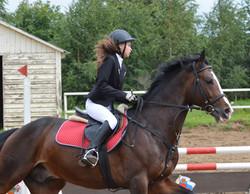 Аренда лошади в Москве