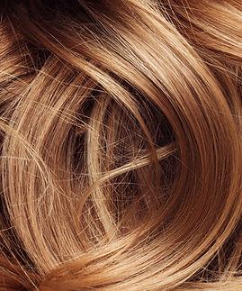 Hair%20Model_edited.jpg