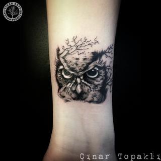 owl wrist _sm.png