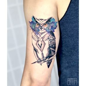 watercolor owl eyes alex.png