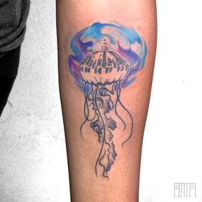 jellyfish 2.png