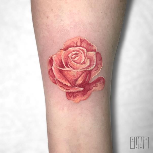 watercolor rose.png