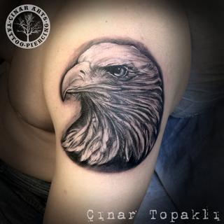 eagle head realistic.png