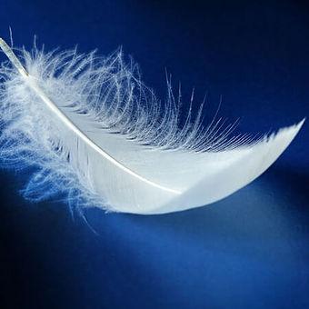Texte-hypnotique-La-plume-blanche.jpg