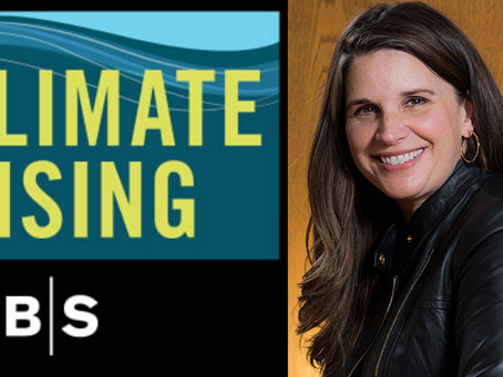 Chief Sustainability Officer Nicole Johnson-Hoffman Interview by Harvard Business School's Podcast