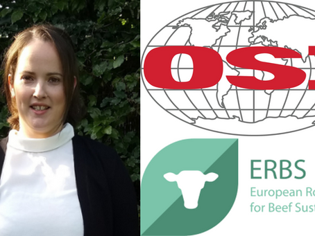 OSI's Claire Donoghue Named Board Chair of the European Roundtable for Beef Sustainability