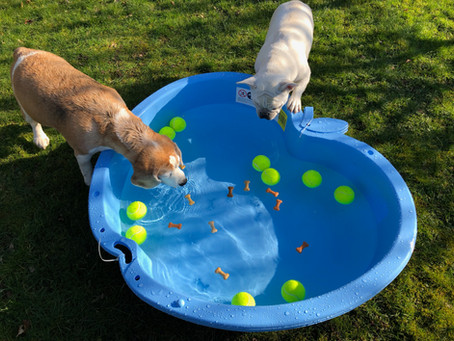 The Art of The Paddling Pool – oh yes, it's an art!