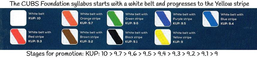 Foundation syllabus_Belts.jpg