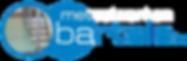 Logo bv zonder achtergrond .png