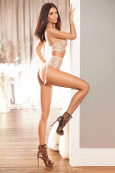 Brunette Escort Cindy