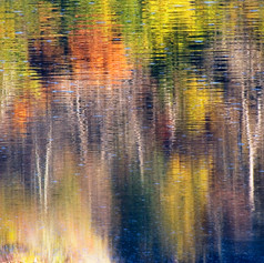Stained Glass Liquefied in Autumn