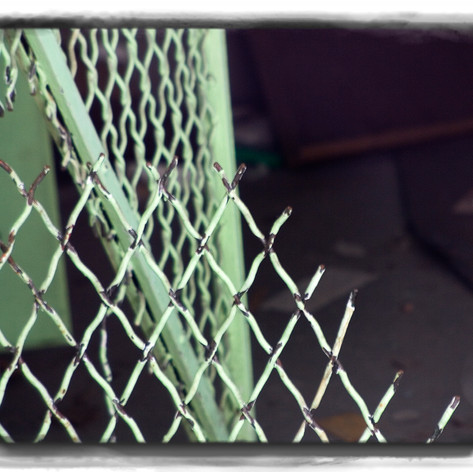 Fenced In or Out?
