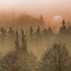 Mystical Moon Orange