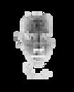 inclusionism headshot pixel.png