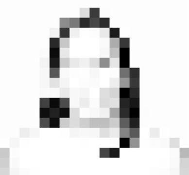 pantone-faces_edited_edited.jpg