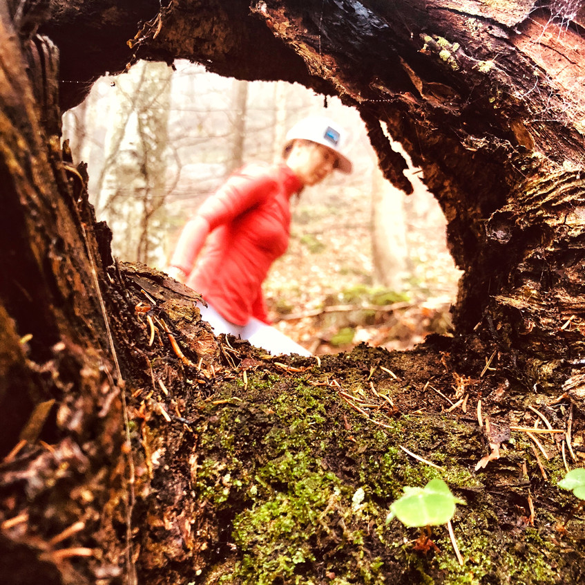Irgendwo im Wald in Thiersee