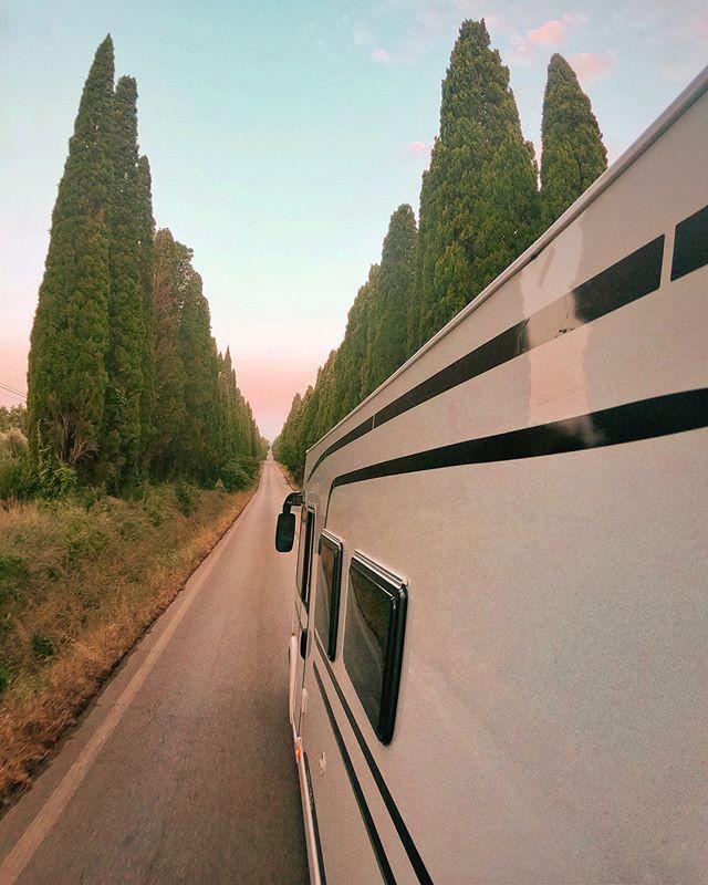 Zypressen-Allee nach Bolgheri, Toskana