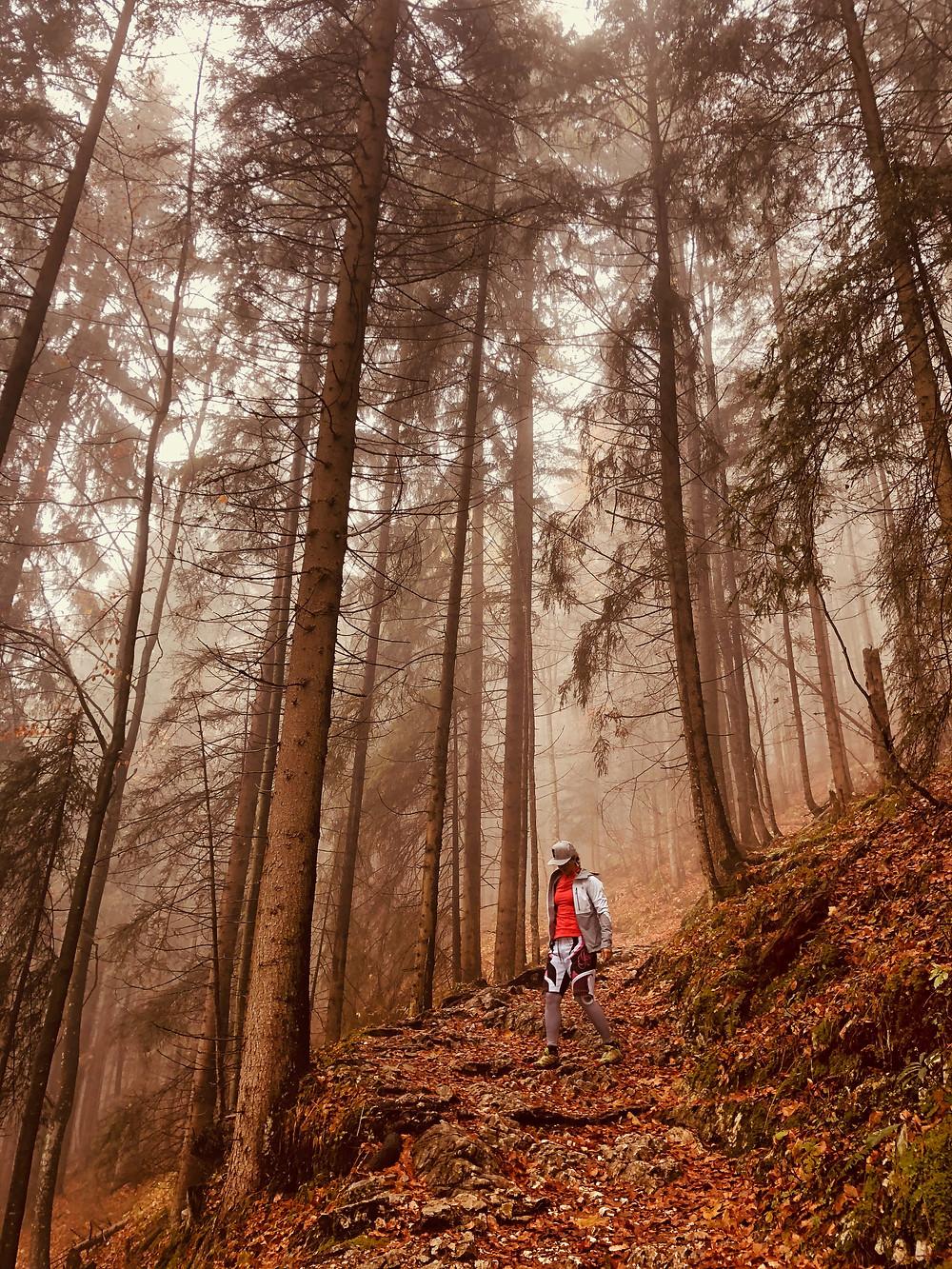 Herbstwanderung zum Pendling in Thiersee