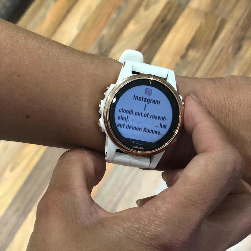 Fenix 5 S Plus Smartwatch-Funktion