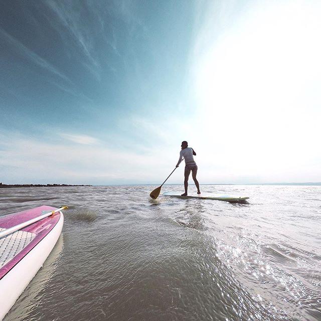 Standup Paddeling auf dem Neusiedler See