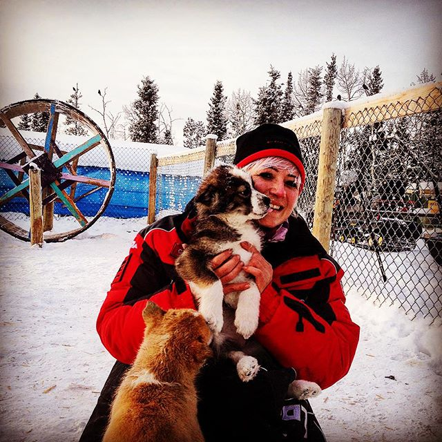 The puppies and #me at #Muktuk guest ranch with Frank Turner after a short dog sledding race on the #Thakiniriver #Yukon great #experience