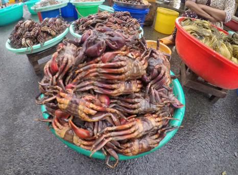 Tag 3 @Vietnam - Sadek I Xa Vinh Xurong