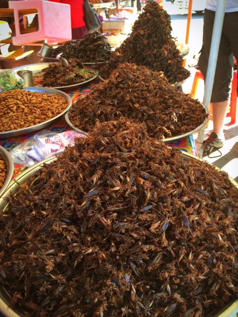 Insekten, Insekten, Insekten