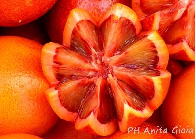 PH Anita Gioia-Blood Oranges