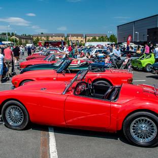 Lineup of classic cars.jpg