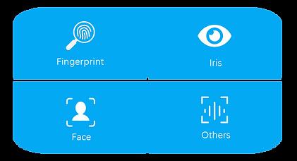 multimodal biometric