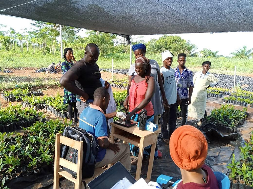 ghanaian labors biometric regidtration