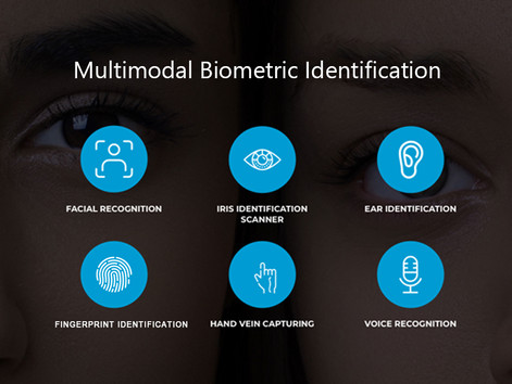 What is Multimodal Biometric Identification System?