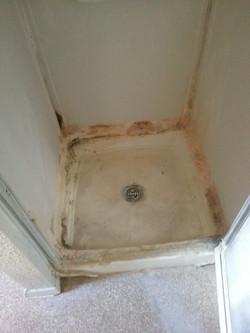 Mold/Poor repair