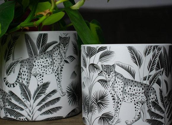 White Ceramic Planting with Cheetah