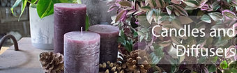 Coloured candles with indoor plant