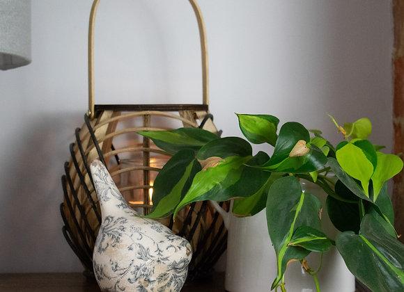 Bamboo Lantern