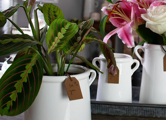 White Ceramic Indoor Plant Pot
