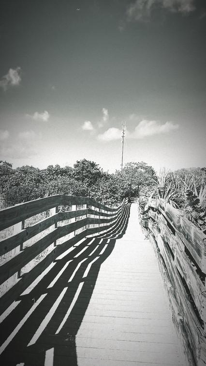 path_lines.JPG